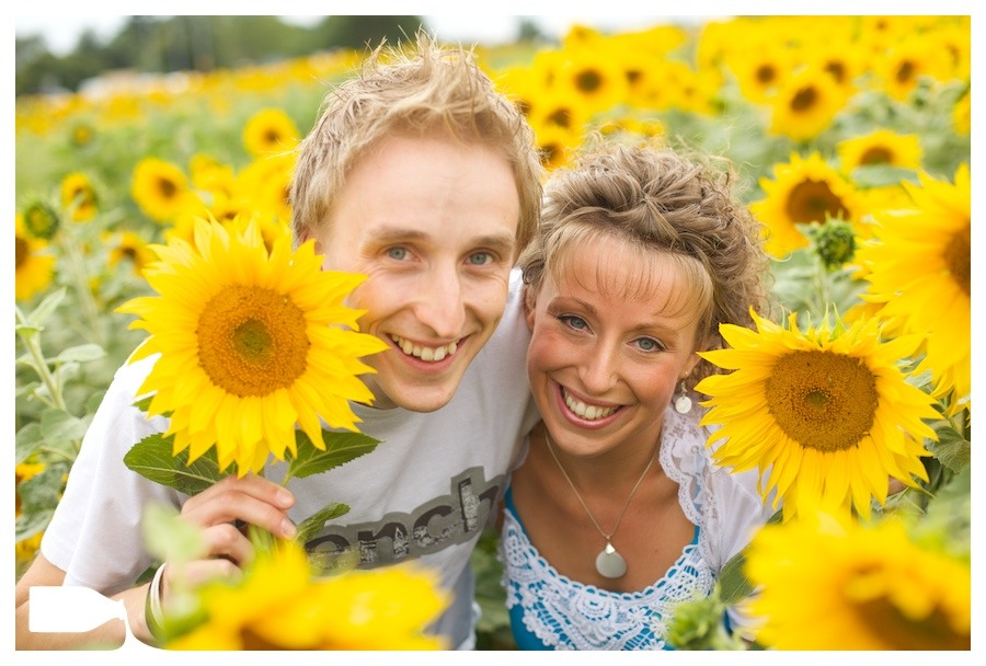 Wedding photography engagement shoot essex sun flowers, Tom and Karen
