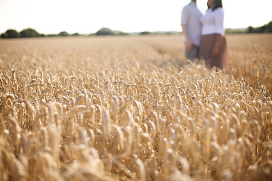 lavender field pre wedding photography (4)