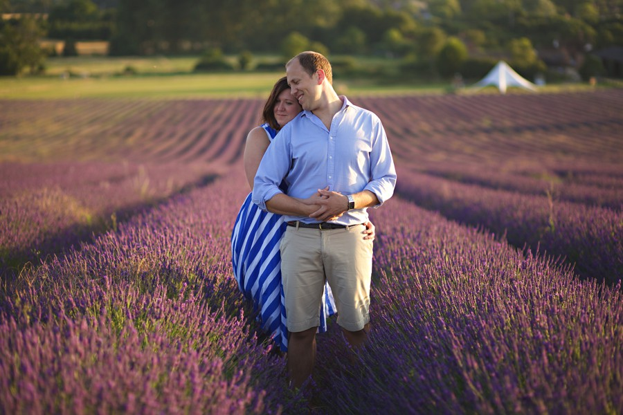 lavender fields hitchin