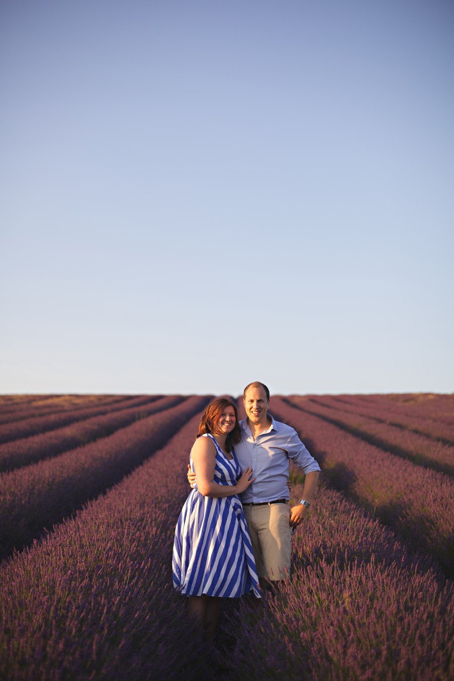 lavender fields photography