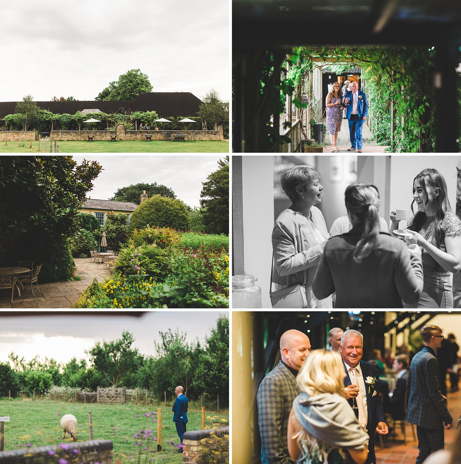 recommended photographer south farm